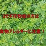 【秋の花粉症】ヨモギ花粉症の方の食物アレルギーの症状と対策!