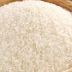 【1月速報】食べて治す?スギ花粉症に効く花粉症緩和米の実力!